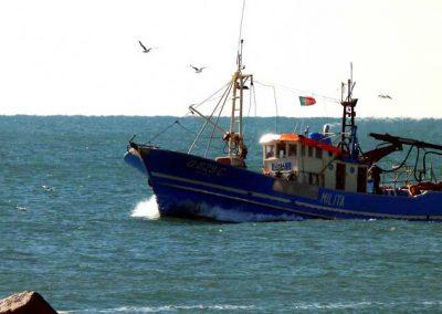 Fishing Boat - Vila Real Santo António